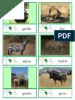 animals & continents.pdf