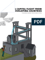 Capital Flight Illegal