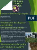 Avances en Biotecnologia Vegetal
