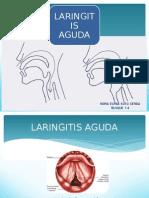 laringitis aguda y cronica 12