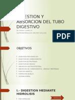Fisiologia - Digestión y Absorción