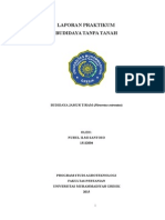 LAPORAN PRAKTIKUM-budidaya Jamu Tiram