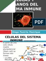 Celulas y Organos