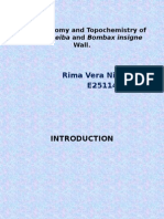 PPT_Wood anatomy and Topochemistry of Bombax ceiba.pptx