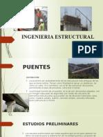 Ingenieria Estructural