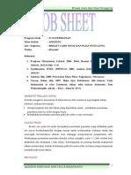 Job Sheet Breast Care Nifas