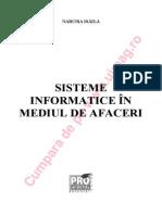 Sisteme Info Mediu de Afaceri