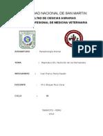 4° PARASITOLOGIA ANIMAL-REPRODUCCIÓN, NUTRICIÓN DE LOS NEMATODOS