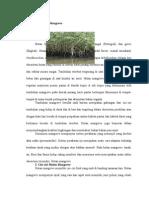 Pengertian Hutan Mangrov1