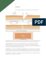 Surface Firing Patterns