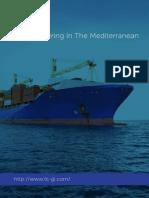LNG-Medditerrenian.pdf