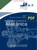 pib_mecanica.pdf