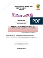 Informe de Practicas Peprofesionales