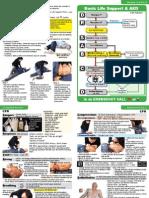 efa2.pdf