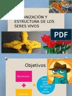 ORGANIZACIÓN Y ESTRUCTURA DE LOS SERES VIVOS.pptx