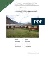 Perfil Pallcaraqui.pdf