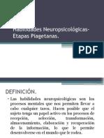 Habilidades Neuro-Etapas Piagetianas