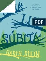 Uma Luz subita - Garth Stein