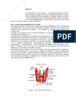 cap.4_libro_1..pdf