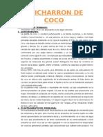 Chicharron de Coco