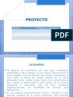 Plantilla Presentacion Plan de Empresa-1