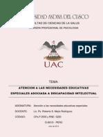 ANNE INTELECTUAL.pdf