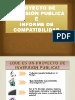 Analisis de Proyecto de Inversion Publica