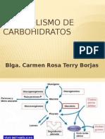 Metabolismo de Carbohidratos i Aetilación