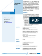 Auditor Interno Integral - 32H