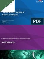 Programa Estratégico Mesoregional. Salmonicultura Sustentable