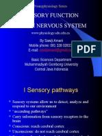 05b Sensory Function
