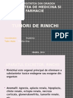 Tumori de Rinichi Power Point