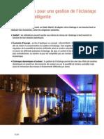 2013--gestion-de-leclairage.pdf