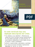 Apocalipsis Análisis Versículo 1,14