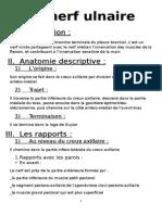 Anatomie Nerf Ulnaire