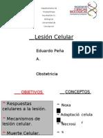 1 Lesion Celular Obstetricia 2013l