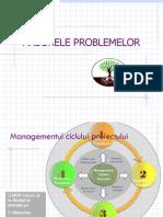 Seminar Arborele Problemelor(1)