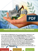 El Fideicomiso PDF