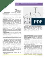 Clase 1 inmuno 13-08 version editada.doc