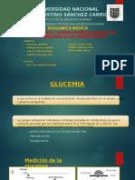 Indice Glicemico y Correlaciones Bioquimicas en El Metabolismo (1)