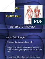 Sistem Otot Tingkatan 4