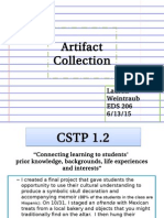 eds 206 - artifact collection