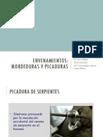 Toxicologia - Modeduras y Picaduras - San Pablo