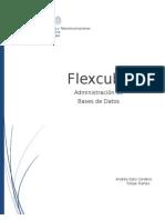 Flex Cube