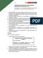 Indicaciones III Taller- Macro regiu00F3n Sur-2015.pdf