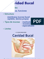 II 3a Semiologia labios 2015.pdf