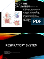 Respiratory System and Anemia