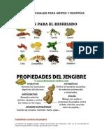 Hiervas Medicinales Para Gripes y Resfríos