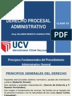 PRINCIPIOS PROCESAL ADMINISTRATIVO