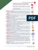 ATLAS ALTERACIONES MORFOLOGICAS DE HEMATIES.pdf